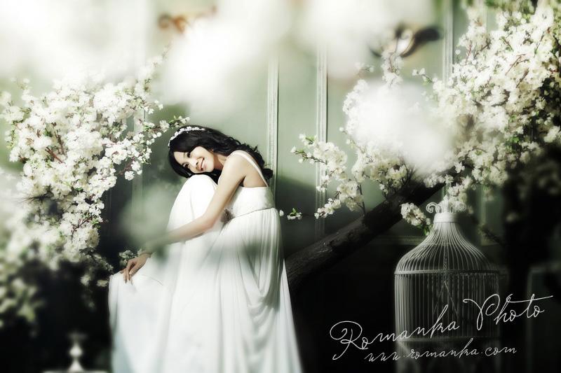 在北京摄影工作室点滴感悟:你若盛开,蝴蝶自来!